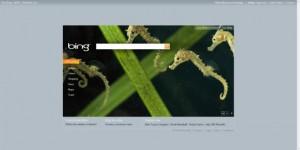 Page d'accueil de Bing