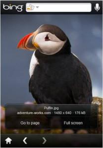Bing pour iPhone - Recherche image