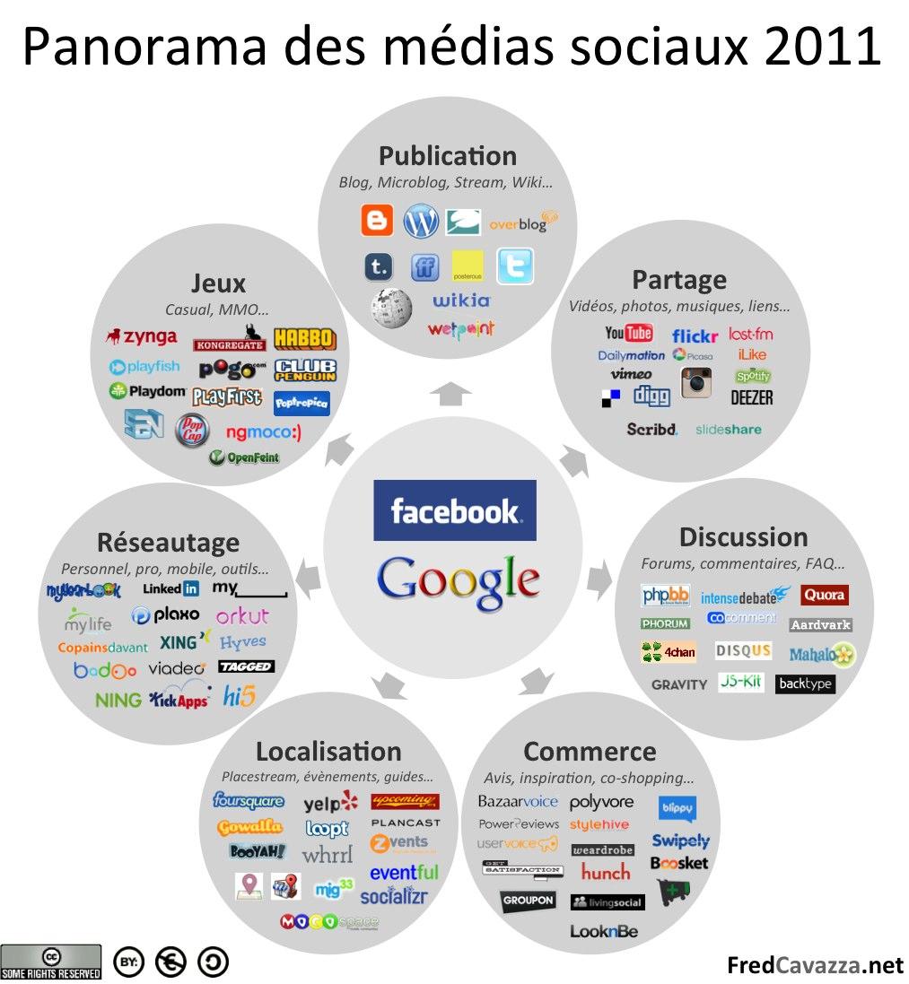 Panorama des réseaux sociaux en 2010