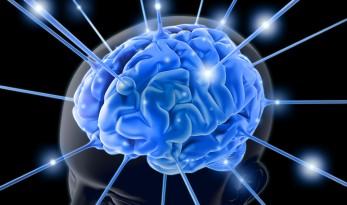 Le cerveau féminin plus actif que le masculin