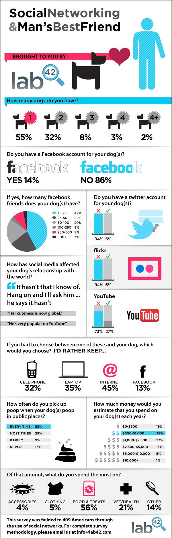 Facebook et les chiens