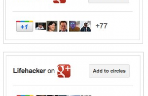 Badge Google Plus