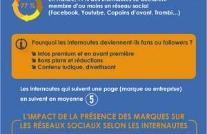 Les réseaux sociaux et les internautes français