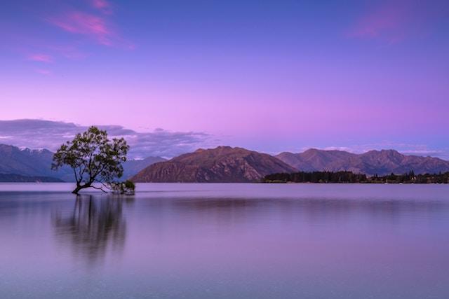 Photographie couleur violet