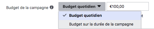 Budget Facebook Ads
