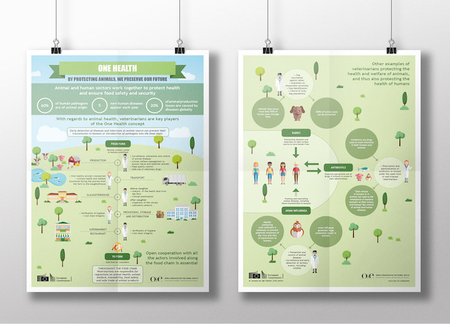 Illustration infographie One Health