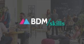 bdmskills-logo