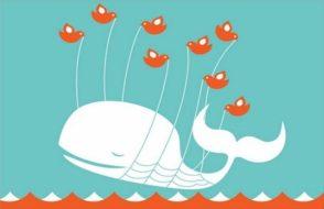 twitter-baleine