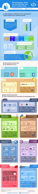 Infographie développeur web