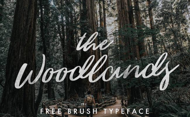 Typographie Woodlands