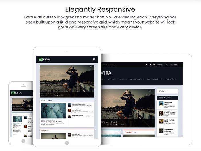 Thème WordPress responsive