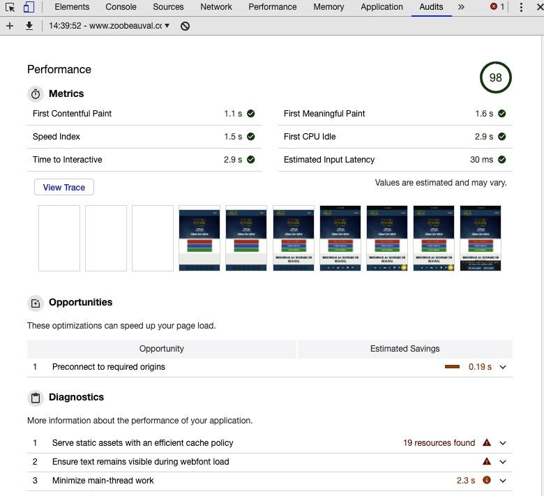 Diagnostic audit de Google