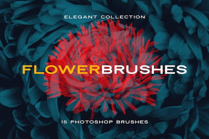 Brushes floral