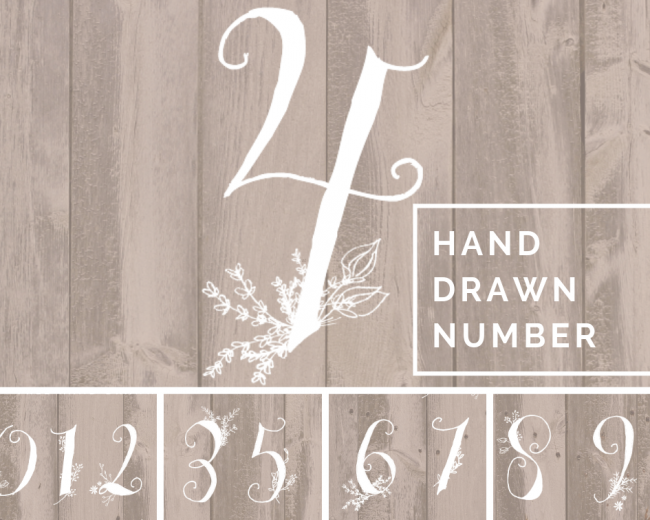 hand nature drawn number typographie pour graphiste
