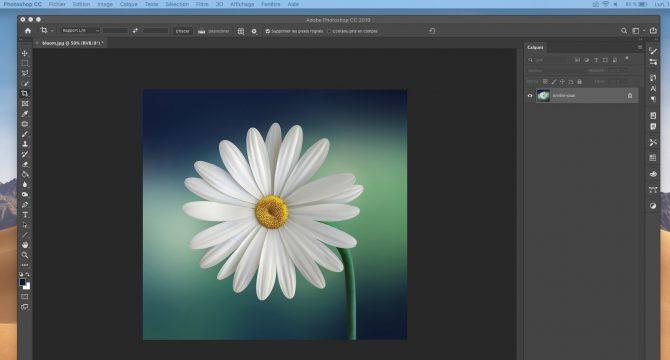 Tuto Photoshop créer une image et un script