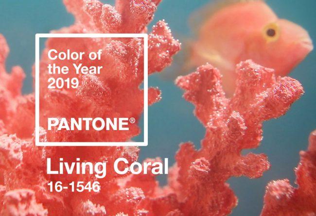 Pantone couleur palette pour graphiste inspiration