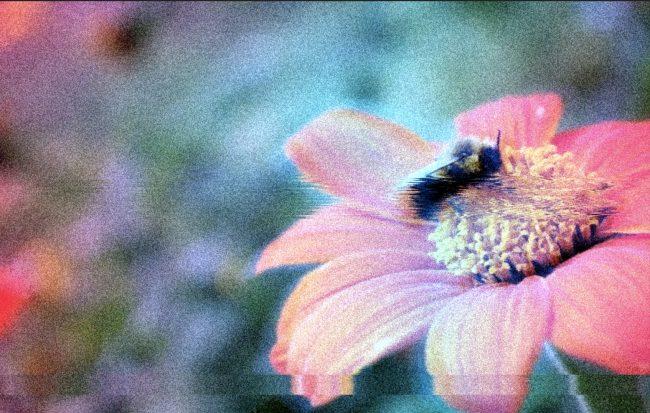 glitch effect distortion photoshop effet animation graphiste