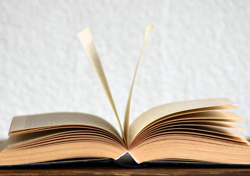 promotion d'un livre blanc