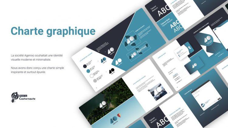 charte graphique graphiste freelance realisation