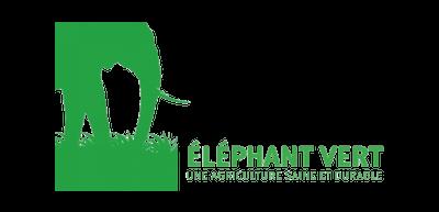 logo vert couleur éléphant animal