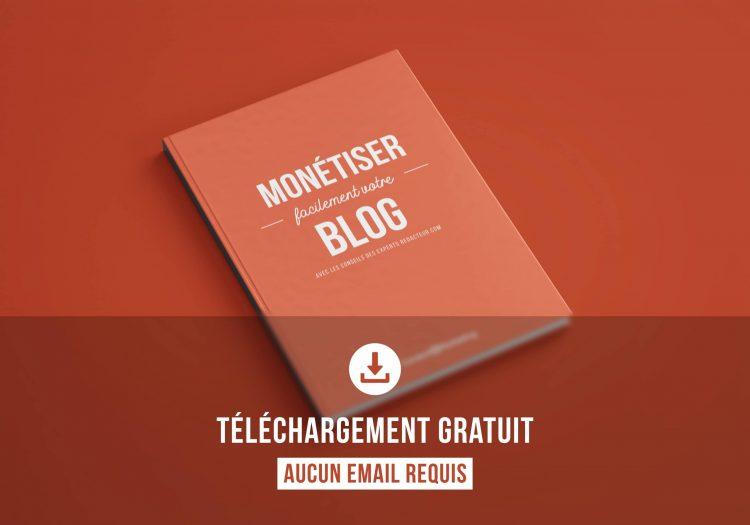 livre blanc gratuit ebook monétiser blog blog gagner de l'argent