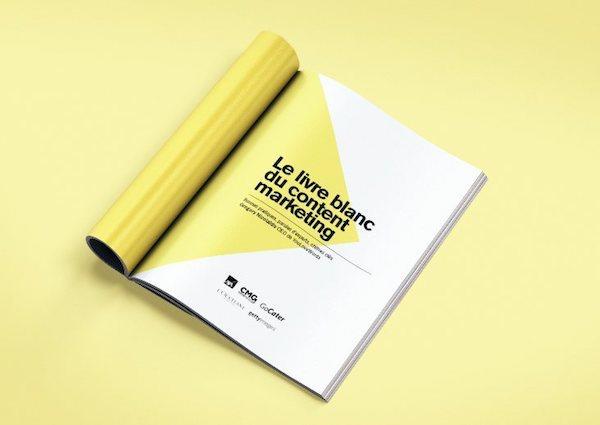 livre blanc content marketing